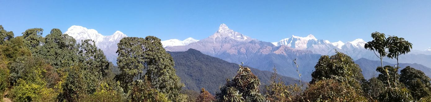 DAY03: DRIVE TO PHEDI - TREK TO POTHANA (2340m), 4hrs walk ( B,L,D)